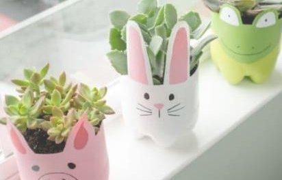 Fizzy bottle pot plants