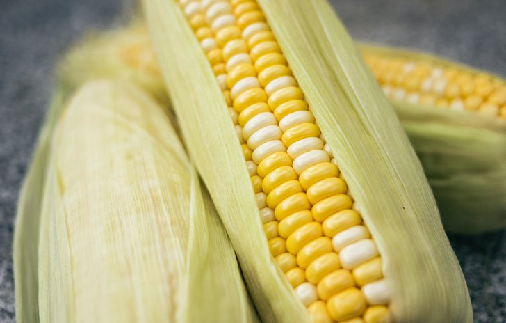 Corn nursery rhyme