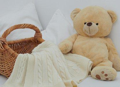 teddy bear picnic.jpg